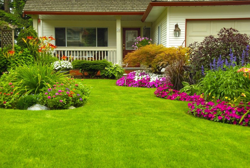 House with garden lawn