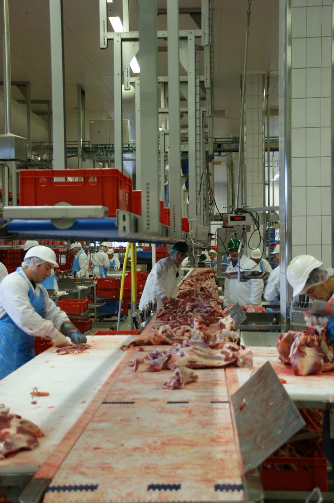 Meat processing line