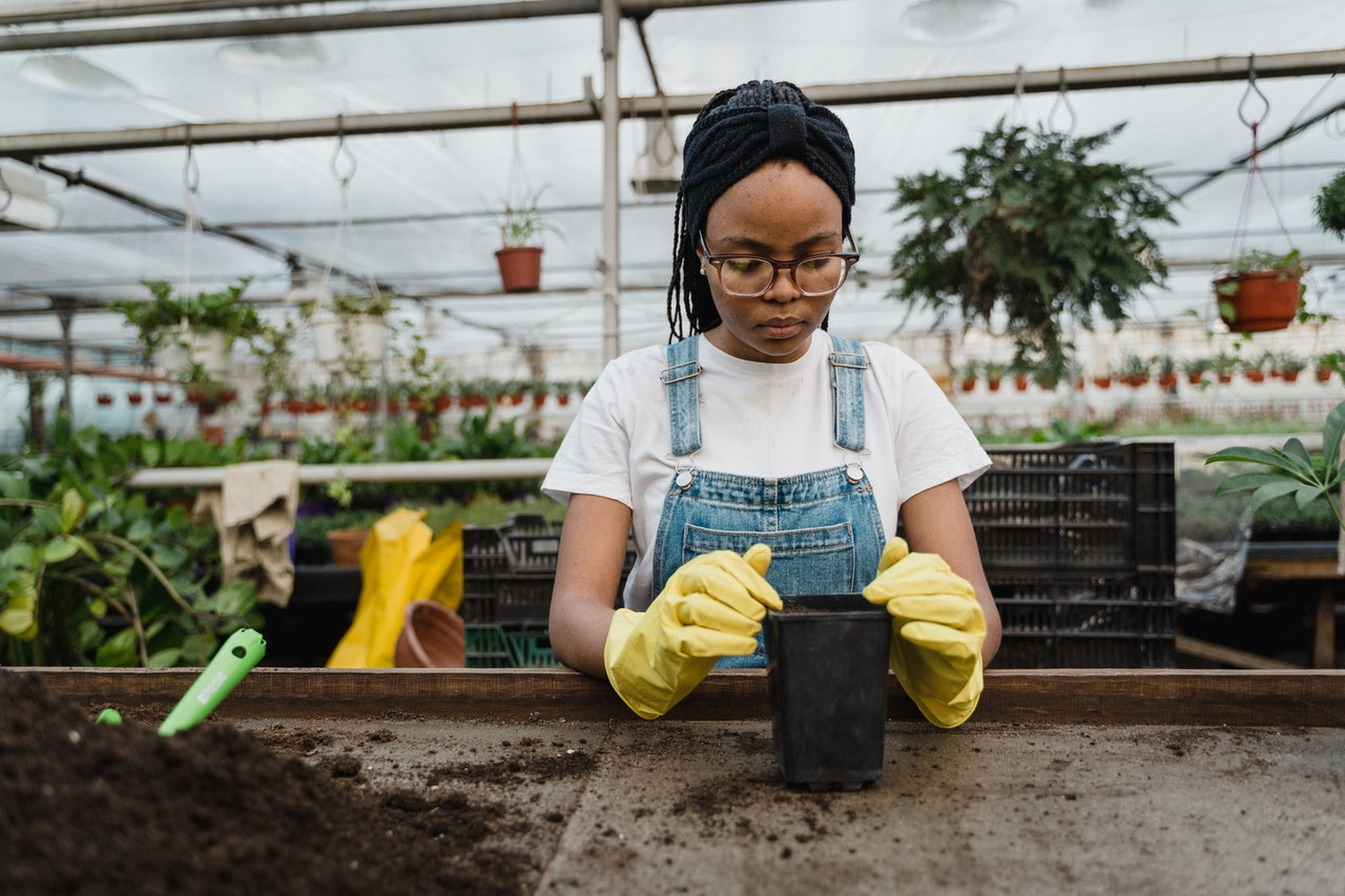 woman at a greenhouse